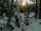 Природа Урала