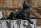 Скульптурная группа «Волки» (Ханты-Мансийск)