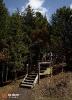 Лестница на холм (Ханты-Мансийск)