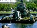 Государственный музей-заповедник «Петергоф» (Фото 3)