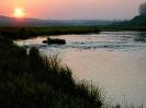 Река Турья на закате